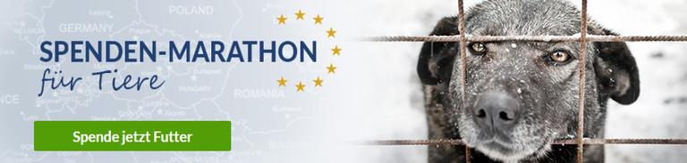 Navigation_Spenden-Marathon_2018.jpg